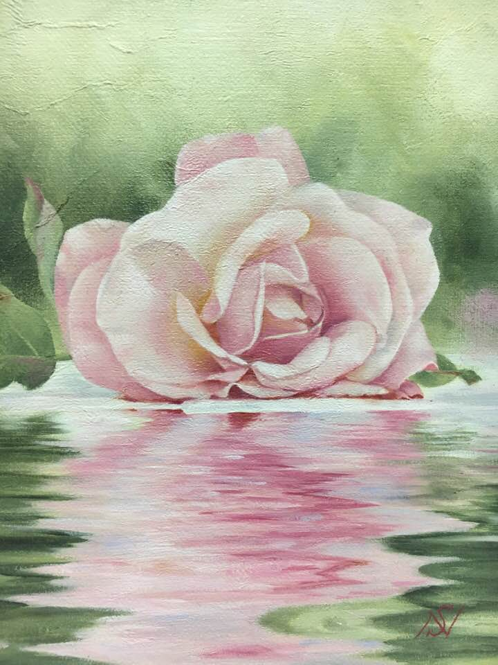 pink rose on the pond.